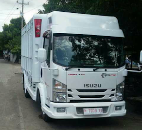 ISUZU ELF NMR 125Ps