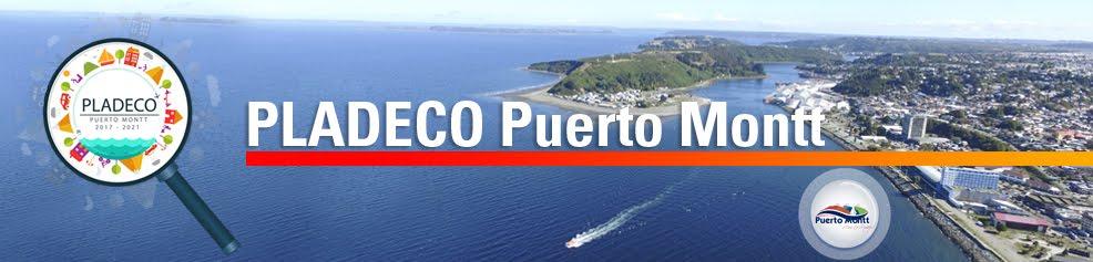PLADECO Puerto Montt