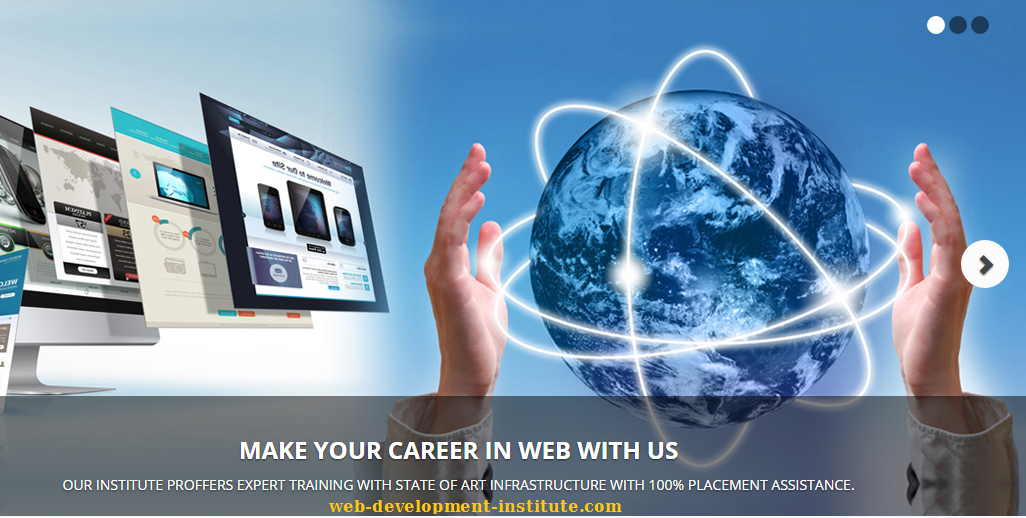 Web Development Institute