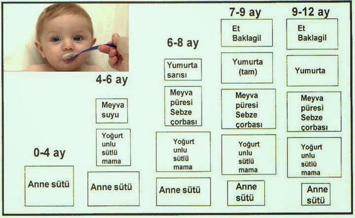 11 Aylık Bebek Ne Yer, Yemekleri, Bebek Menüsü, Bebek Beslenmesi Tablosu