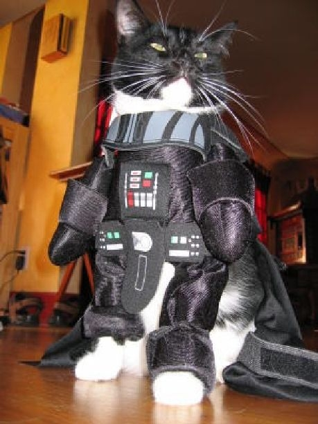 Tux as star wars character