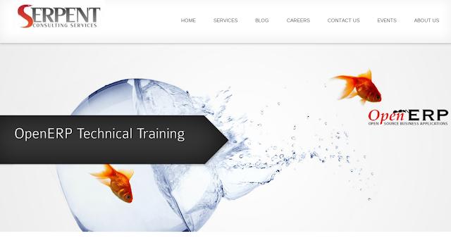 OpenERP Technical Training