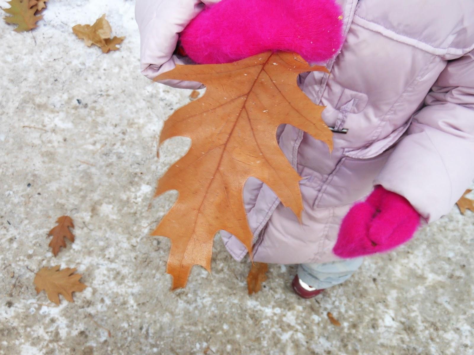 листопад зимой, прогулки с детьми