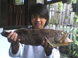 mancing ikan kerapu