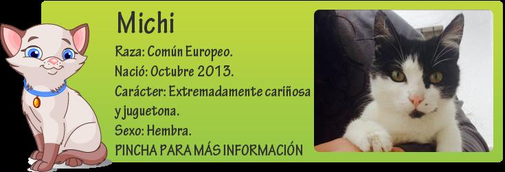 http://mirada-animal-toledo.blogspot.com.es/2014/01/michi-maullando-en-un-portal.html