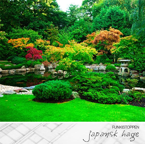 Funkistoppen: japansk hage