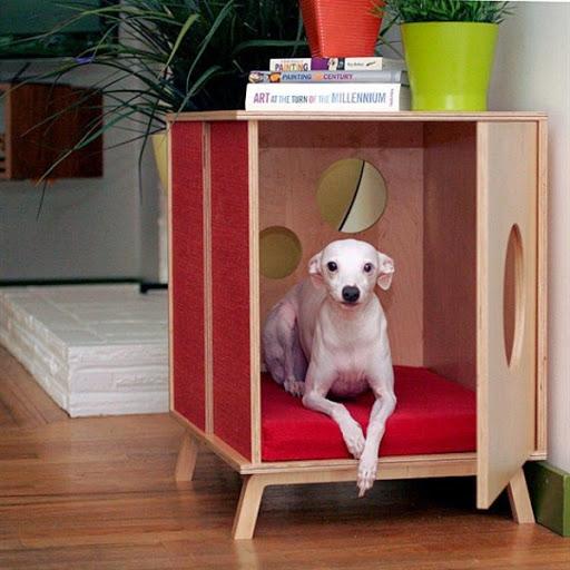 Model Rumah Kandang Anjing Desain Minimalis Terbaru