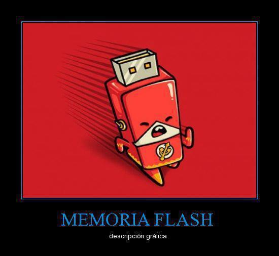 Descripción gráfica : Memoria Flash