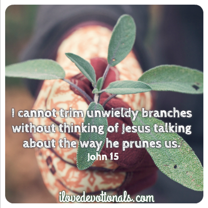 John 15 picture quote
