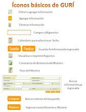 Iconos básicos del Programa