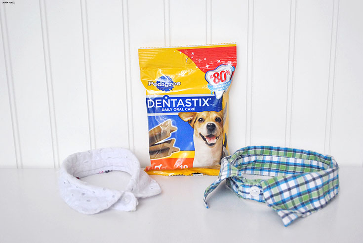 Share a little Funshine and make an adorable DIY designer dog shirt collar in minutes! #ShareFunshine