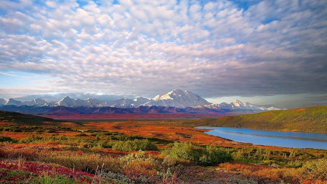 USA nature landscape Denali National Park HD Wallpaper