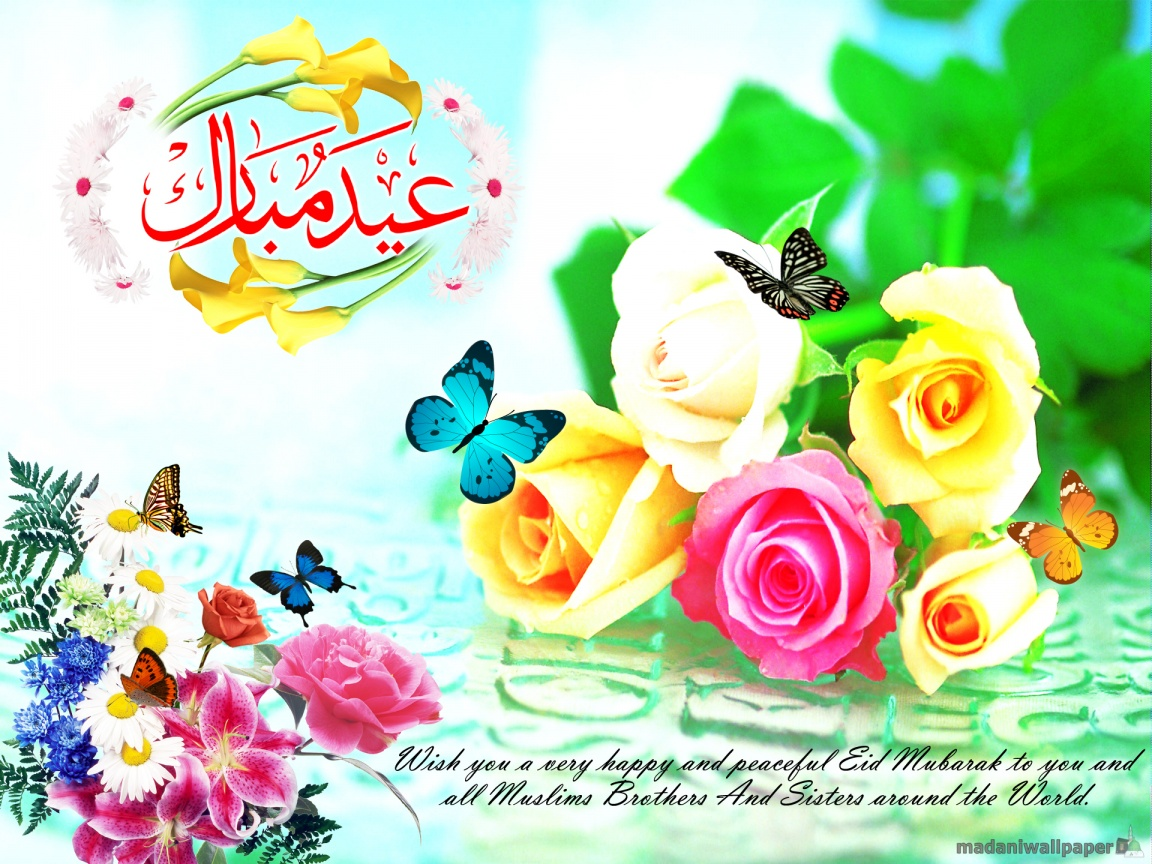 Hd Widescreen Backgrounds Wallpapers Free Eid Wallpapers Hd