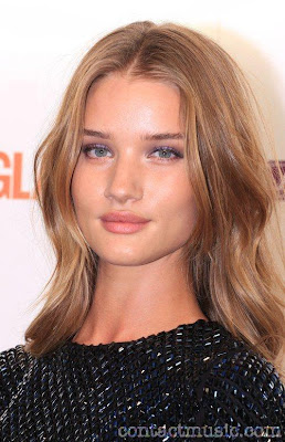 Rosie Huntington Whiteley Wiki And Photos