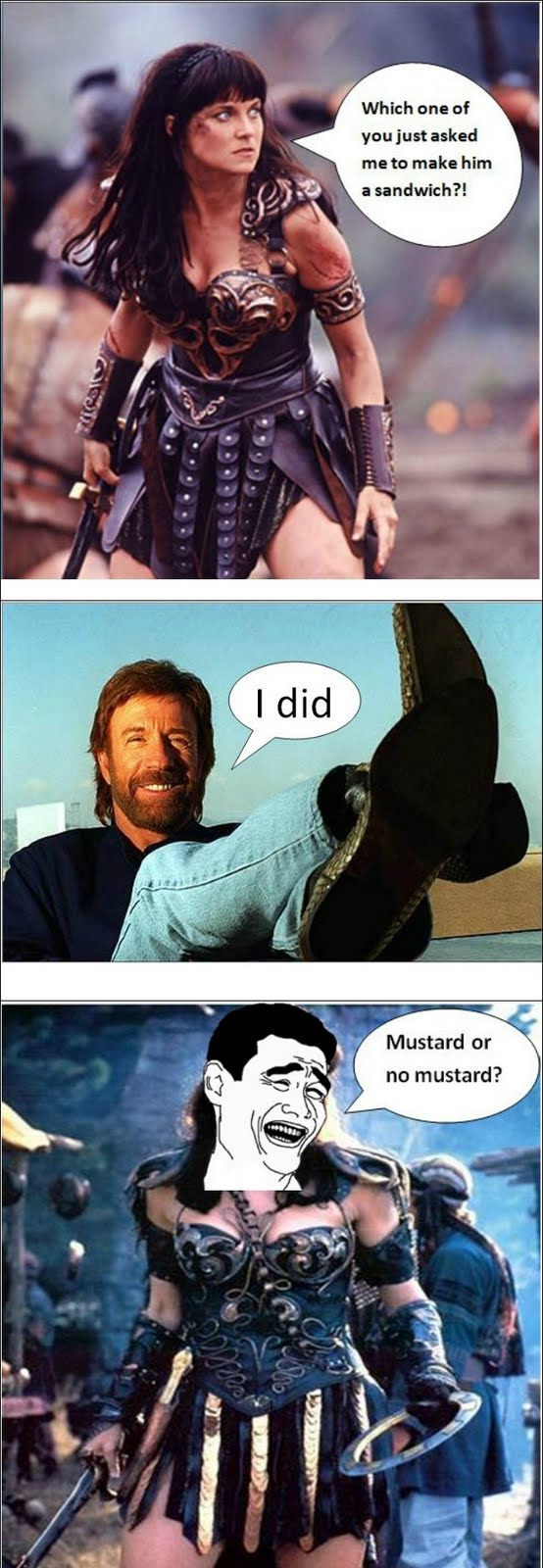 Xena - Which One Of You Just Asked Me To Make Him A Sandwich? - Chuck Norris