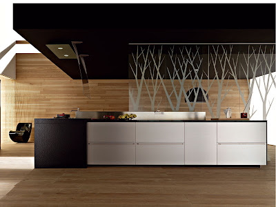 contemporary kitchen design with clean line wooden floor and wall and stainless steel cabinets