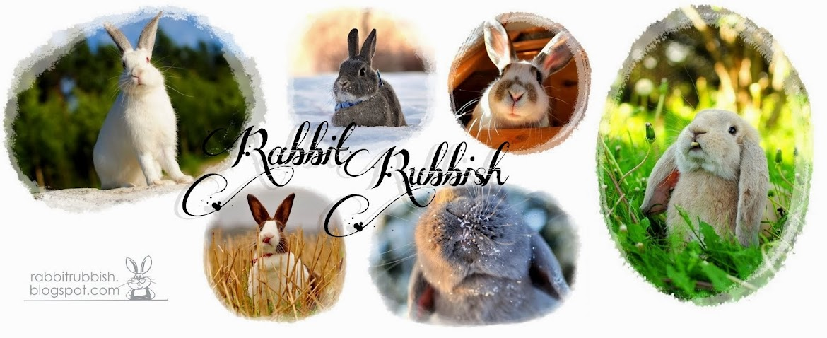 rabbit rubbish