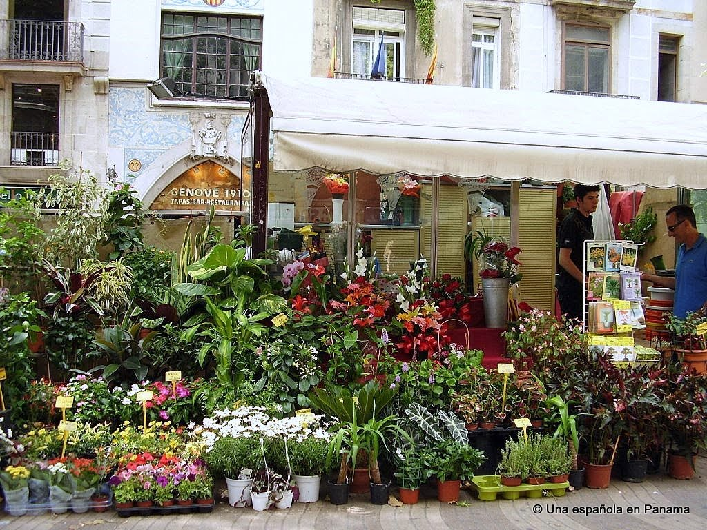 floristerias rambla flores
