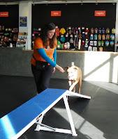 Denver's Pet Source
