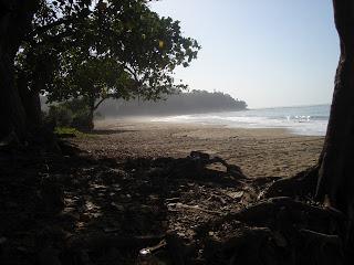 Visitindonesia; Tamban Beach, A Tranquility Beach That Rich Of Tradition Inwards Malang Metropolis Due East Java