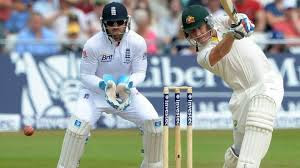 Haddin top scored for Australia chasing the target of 311 runs