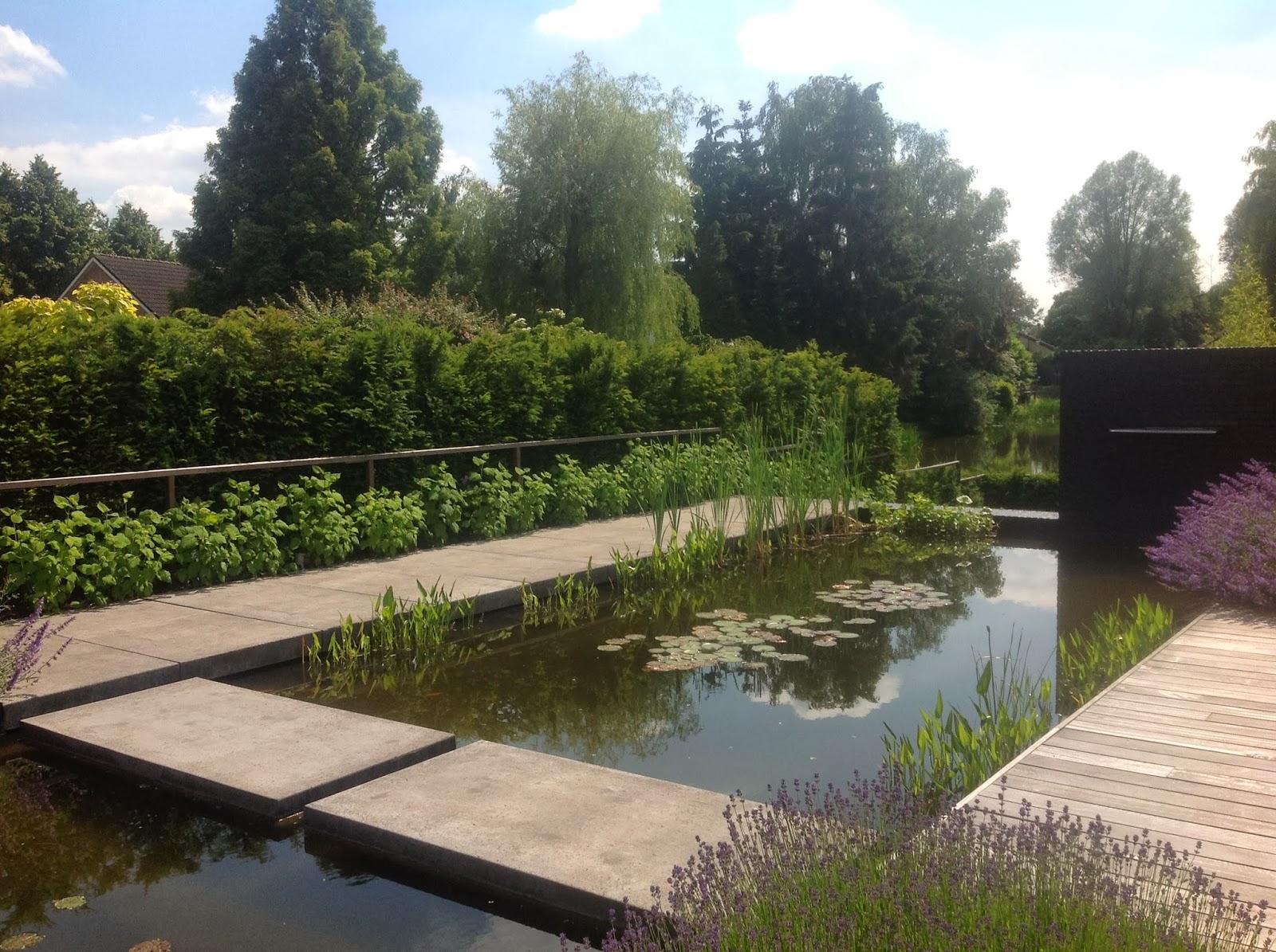 Jardim de stefania espelhos d gua for Tuinen aanleggen foto s