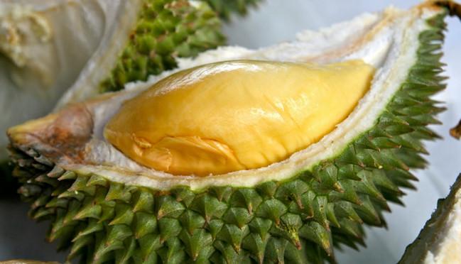 Durian Tembaga (Kampar, Riau) - www.jurukunci.net