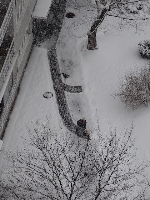 Warszawa Witolin zima 13 marzec 2013
