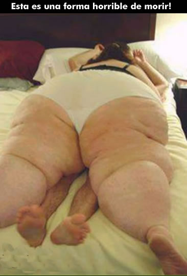 gordo seno: