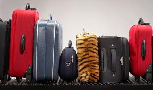 Viajantes! nem tudo pode ser trazido em suas viagens.