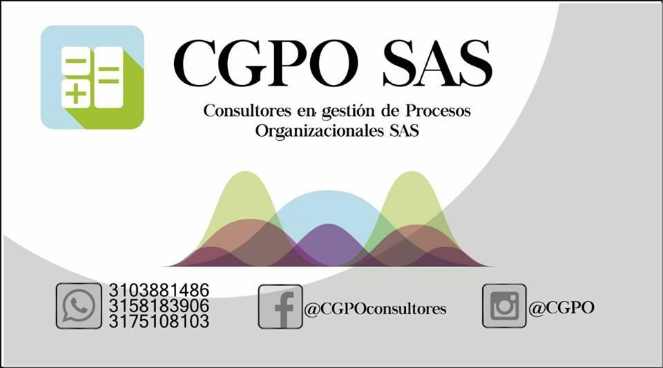 CGPO CONSULTORES EN GESTION DE PROCESOS