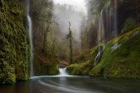 Cascada de agua cristalina en el río del bosque - Waterfall