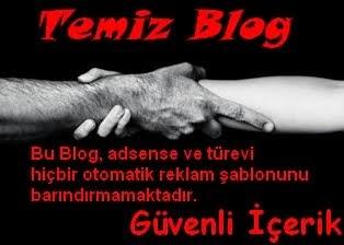 Temiz Blog