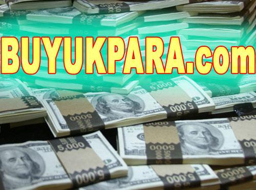 Satılık para kazanma domaini
