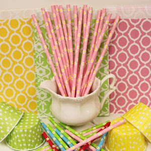 NEW Daisy Paper Straws