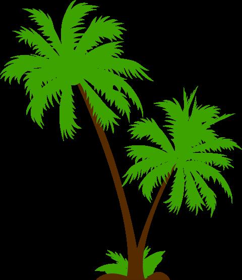 L 39 antiseiche juillet 2015 l 39 antiseiche - Dessin palmier ...