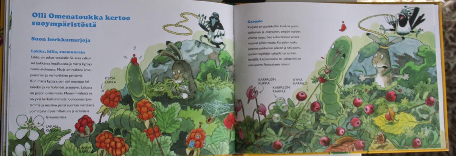 Finnish swamp berries