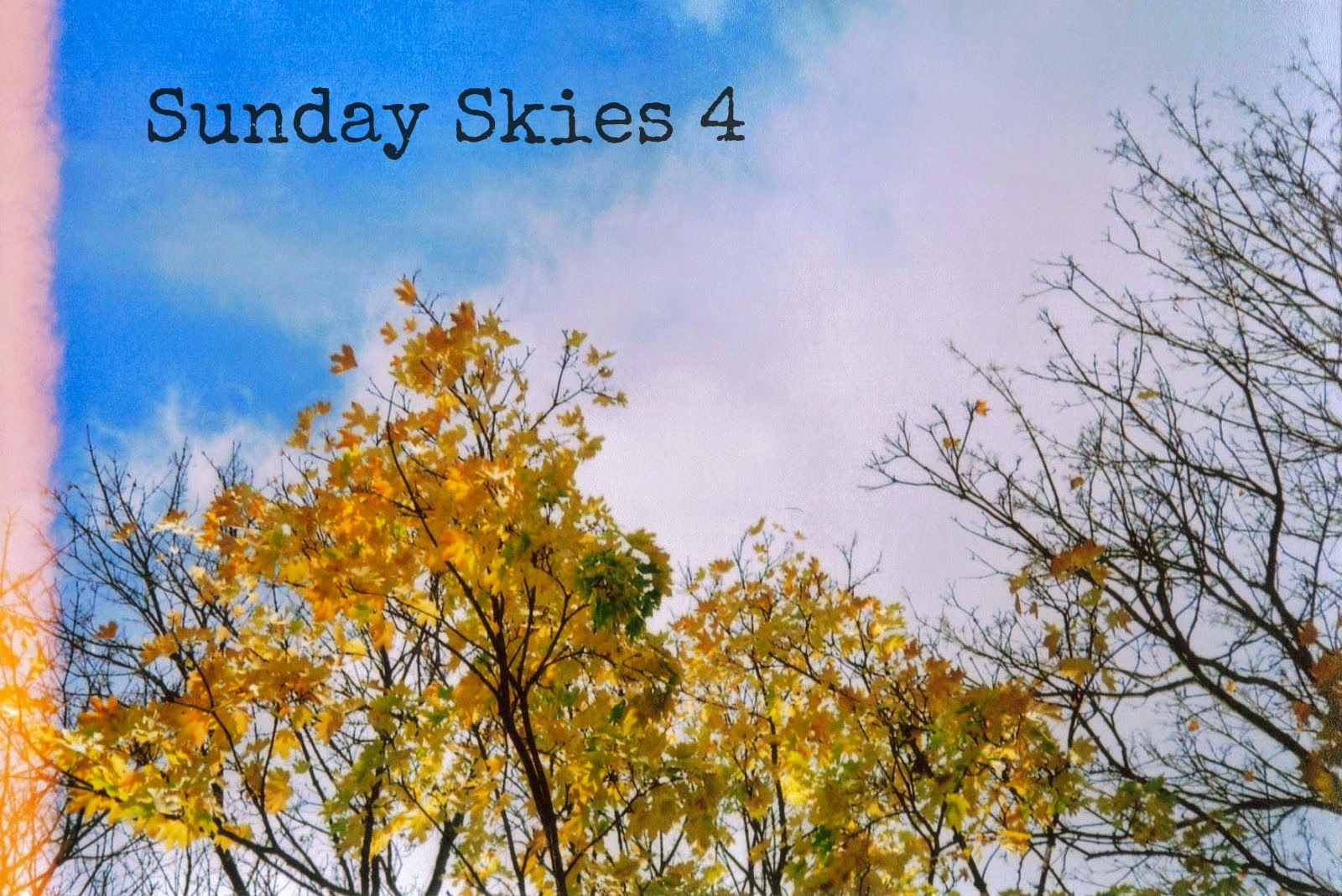 http://talesonfilm.blogspot.co.uk/2014/04/sunday-skies_13.html