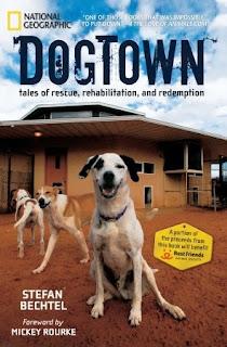 Dogtown-Stefan-Bechtel-book