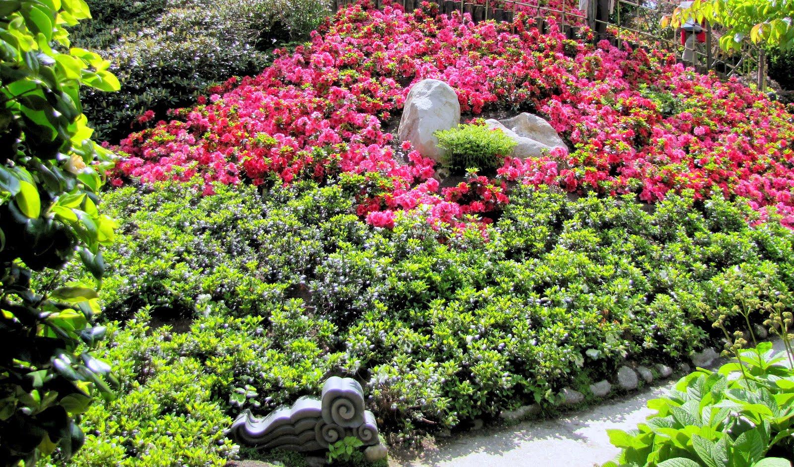 Le jardin japonais d 39 albert kahn paysages et fleurs au for Albert kahn jardin japonais