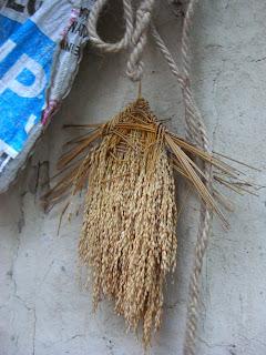 ブータンの民家の軒先に吊るされるまじない。どこかしめ縄に似ている。