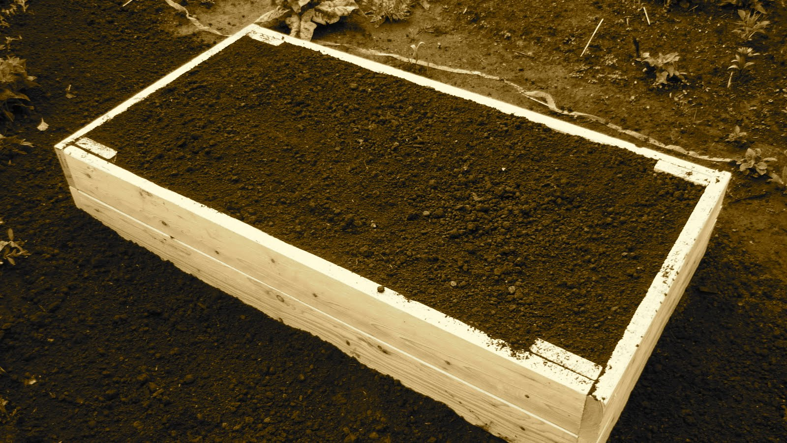 lesurvivaliste le jardin sur lev. Black Bedroom Furniture Sets. Home Design Ideas