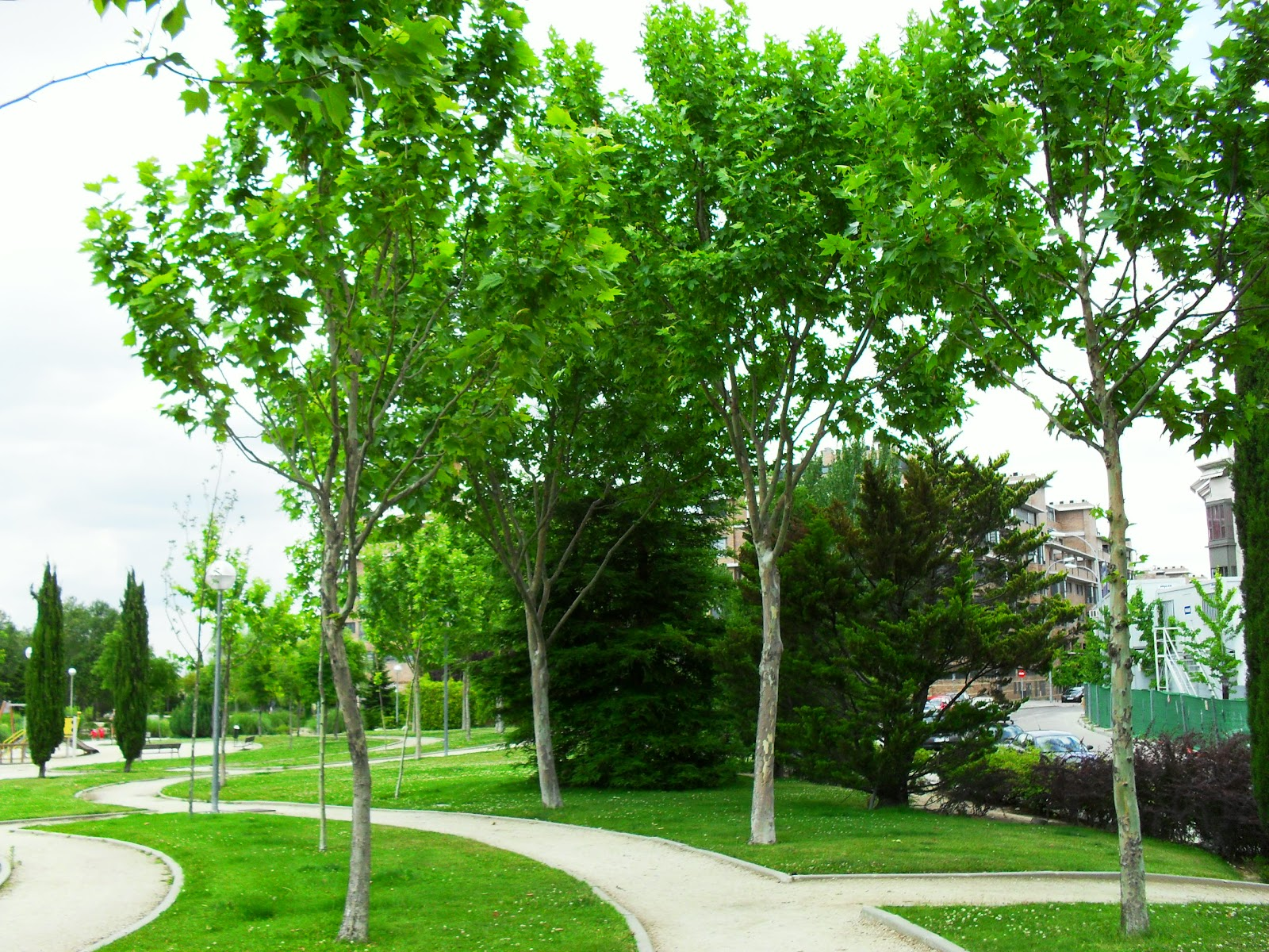 Arte y jardiner a perfecto uso de la curva en dise o for Jardineria paisajista