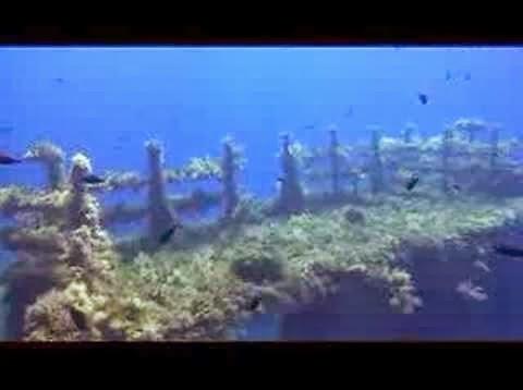 scuba diving crete4