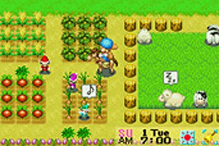 Cheat Game Harvest Moon Mineral Town Gba
