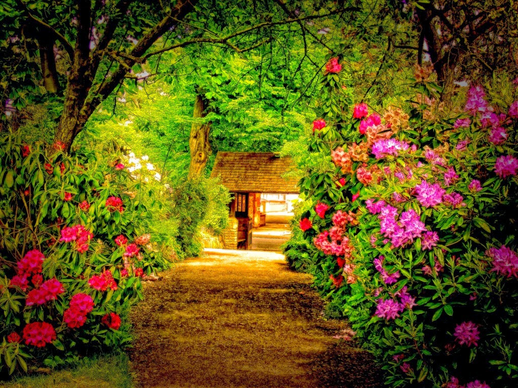 "<img src=""http://1.bp.blogspot.com/-NBFjYRiR4d4/UtF2Yr3F0vI/AAAAAAAAHns/8FZ6w2apI_4/s1600/parks-rhododendron.jpeg"" alt=""park wallpapers"" />"