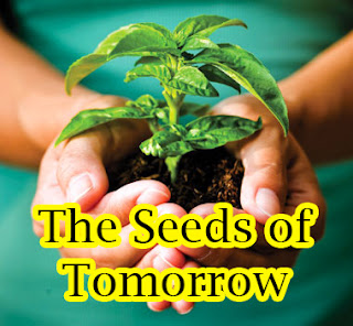 Garden Talk: The Seeds of Tomorrow