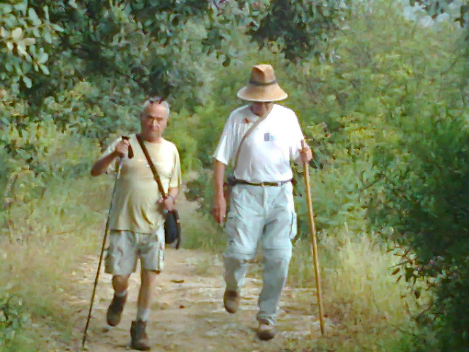 Grupo Tubienestar Sc - Arroyo de San Servn - Pedregosa