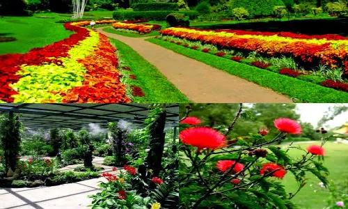 beautiful hakgala botanical garden