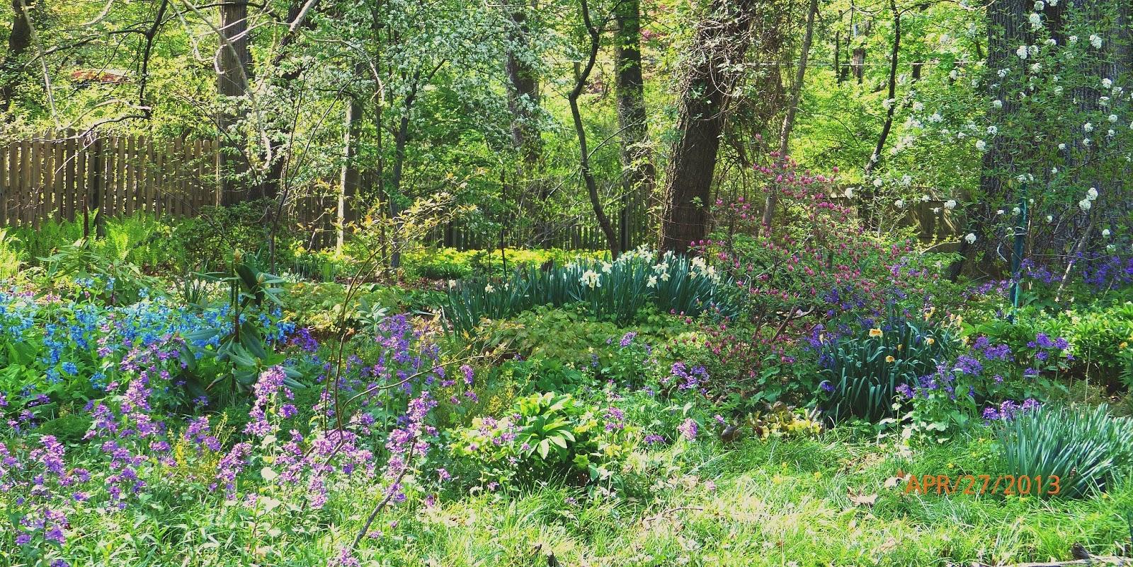 Wissahickon Schist The Perfectly Imperfect Woodland Garden – Woodland Garden Plants